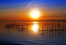 Oranje kleuren in het meer stock foto