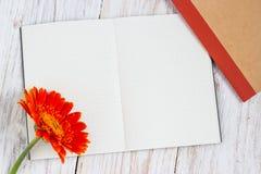Oranje kleurrijke gerberabloemen Royalty-vrije Stock Fotografie