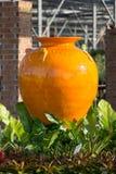 Oranje kruik Royalty-vrije Stock Foto's