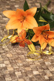 Oranje lelie Royalty-vrije Stock Afbeelding