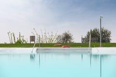 Oranje levende spaarder twee bij pool stock fotografie