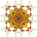Oranje mandala van de herfst stock illustratie
