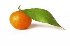 Oranje mandarijn Royalty-vrije Stock Foto's