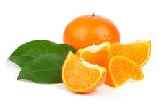 Oranje mandarins met groen blad royalty-vrije stock foto