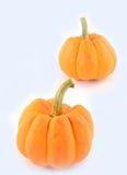 Oranje miniatuurpompoen Royalty-vrije Stock Afbeeldingen