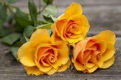 Oranje nam Bloem toe Royalty-vrije Stock Foto's