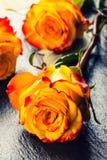 Oranje nam toe Geel nam toe Verscheidene oranje rozen op Granietachtergrond Stock Foto
