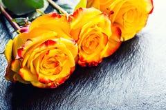Oranje nam toe Geel nam toe Verscheidene oranje rozen op Granietachtergrond Stock Afbeeldingen