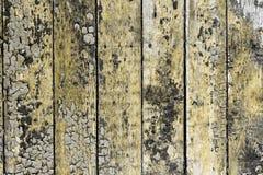 Oranje natuurlijke hardhouttextuur - vrij abstracte fotoachtergrond stock foto's