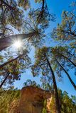 Oranje okergrond in het dorp van Roussillon, het nationale park van Luberon, stock fotografie