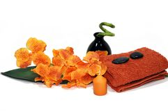 Oranje Orchidee stock foto