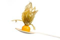 Oranje organische physalis in houten die lepel over witte achtergrond wordt geïsoleerd Stock Fotografie