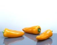 3 oranje paprikapeper Stock Fotografie
