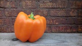 Oranje Peper Royalty-vrije Stock Afbeeldingen