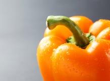 Oranje peper met waterdalingen op de grijze achtergrond stock afbeelding