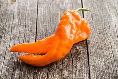 Oranje pepergroente Royalty-vrije Stock Fotografie