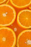 Oranje plak royalty-vrije stock foto