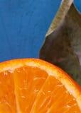 Oranje plak met blad Stock Afbeelding