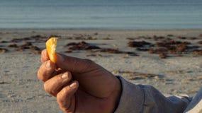 Oranje plak ter beschikking bij strand Stock Foto's