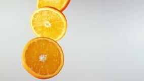 Oranje plakkenvlieg en omwenteling stock videobeelden