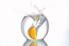 Oranje Plons Royalty-vrije Stock Foto's