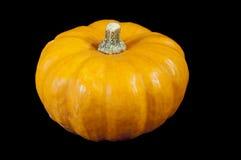 Oranje Pompoen Royalty-vrije Stock Afbeelding