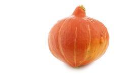 Oranje Pompoen Royalty-vrije Stock Afbeeldingen