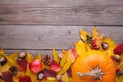 Oranje pompoen met bladeren en groenten op een grijze lijst stock foto