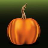Oranje pompoen op groene achtergrond Royalty-vrije Illustratie