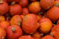 Oranje Pompoenen Stock Foto's