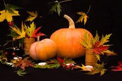 Oranje pompoenen onder kleurrijke bladeren Royalty-vrije Stock Afbeeldingen