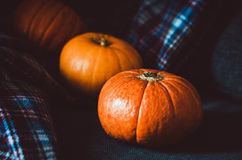 Oranje pompoenengroep op blauwe plaidachtergrond thuis De herfstvoorwerp, dalingssymbool, Thanksgiving dayconcept Stilleven 1 Stock Foto's