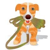 Oranje puppy die een leiband, beeldverhaal op een witte achtergrond houden, Stock Afbeelding