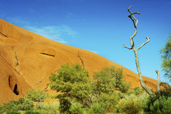 Oranje rots, blauwe hemel Stock Foto's