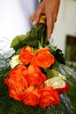 Oranje Rozen Royalty-vrije Stock Afbeeldingen