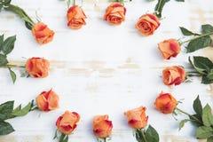 Oranje rozen op witte rustieke houten achtergrond Stock Fotografie