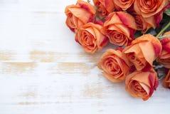 Oranje rozen op witte rustieke houten achtergrond Stock Foto