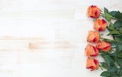 Oranje rozen op witte rustieke houten achtergrond Stock Afbeelding
