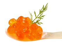 Oranje Salmon Caviar stock fotografie