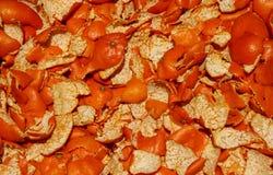 Oranje schil Stock Fotografie