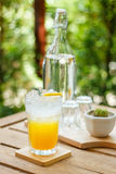 Oranje soda in tropisch Royalty-vrije Stock Foto