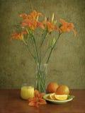 Oranje stemming Royalty-vrije Stock Fotografie