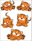 Oranje tijger Royalty-vrije Stock Foto's