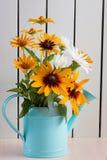 Oranje tuinenmadeliefjes, rudbeckia, bloem in de blauwe gieter royalty-vrije stock afbeelding
