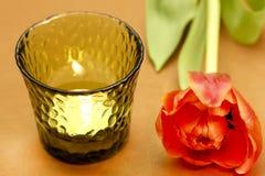 Tulp met kaarsen Stock Fotografie