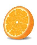 Oranje vector Stock Afbeelding