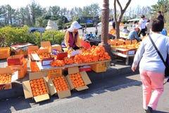 Oranje verkoper bij Jeju-eiland Korea Stock Fotografie