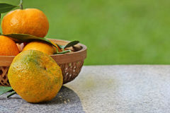 Oranje vruchten Royalty-vrije Stock Fotografie