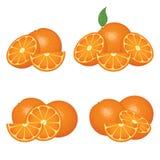 Oranje vruchten samenstellingen Stock Afbeelding