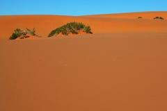 Oranje zand en blauwe hemel Stock Foto